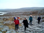 A guided tour of the Burren